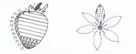 klubnichka 4 shema