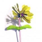 Цветок из пластилина и плодовясеня