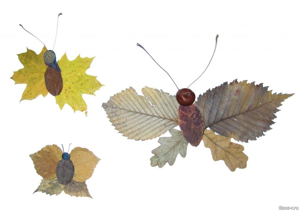 Поделка из листьев или листа
