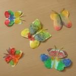 Бабочки изклякс