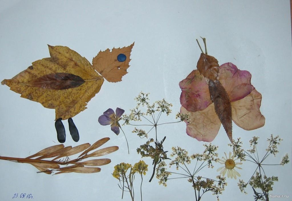 Поделка из листьев птицу 810