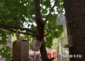 День города Балашиха. 6 сентября 2014.  Белка у кормушки